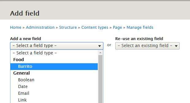 Custom field type visible in field type selection