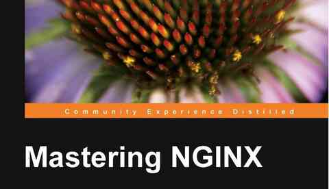 Mastering Nginx book cover image